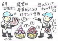 Mx4500fn_20100704_163749_004
