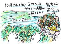 Mx4500fn_20101102_233038_003