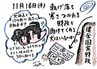 Mx4500fn_20111126_003145_001
