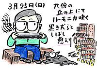 Mx4500fn_20120329_163502_006