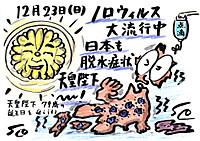 Mx4500fn_20121229_230528_001